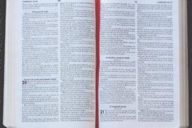 Bible and Outreach Programs